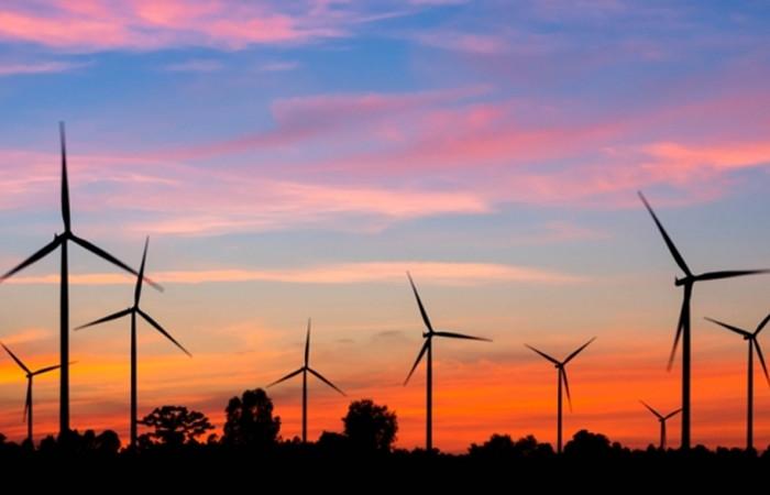 Çalık, Gürcistan'ın rüzgarına yatırım yapacak