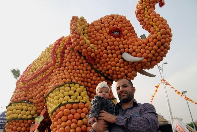 Mersin 5. Narenciye Festivali başladı