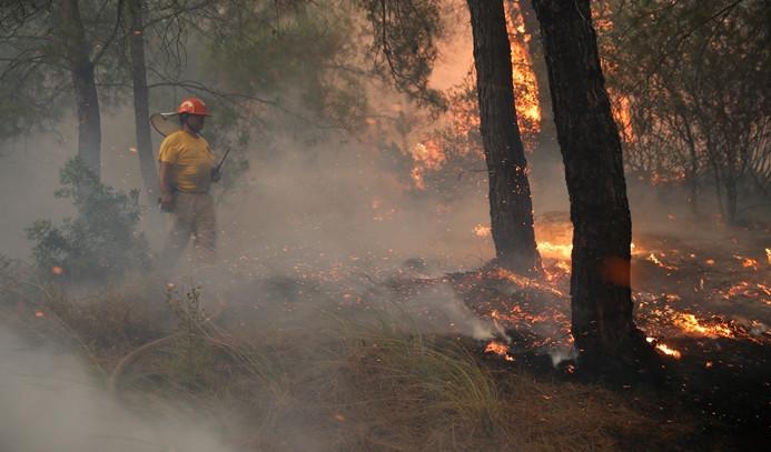Dört ilde orman yangını