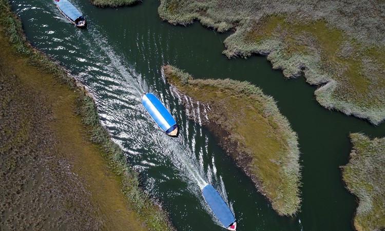 Dalyan Kanalı'nın dolmuş tekneleri