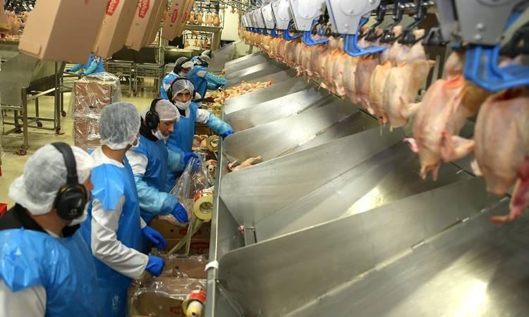 Hazır gıdaya talebin artması işletmeleri yeni yatırımlara yöneltti