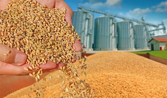 TMO'ya sıfır gümrükle tahıl ithalatı yetkisi