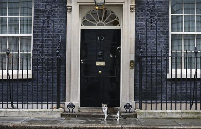 İngiltere'de 10 aday başkanlık için yarışıyor