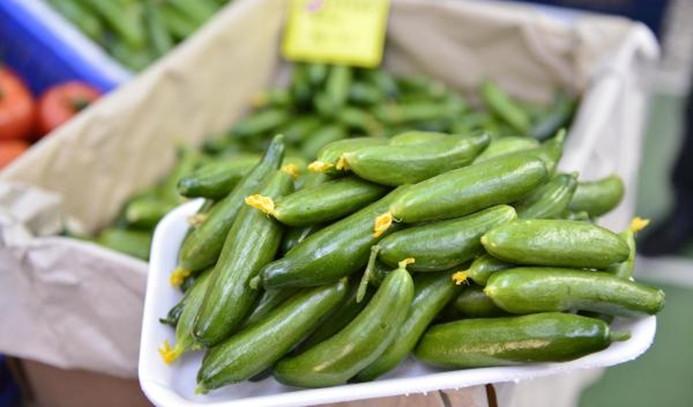 Ağustosta en çok salatalığın fiyatı arttı