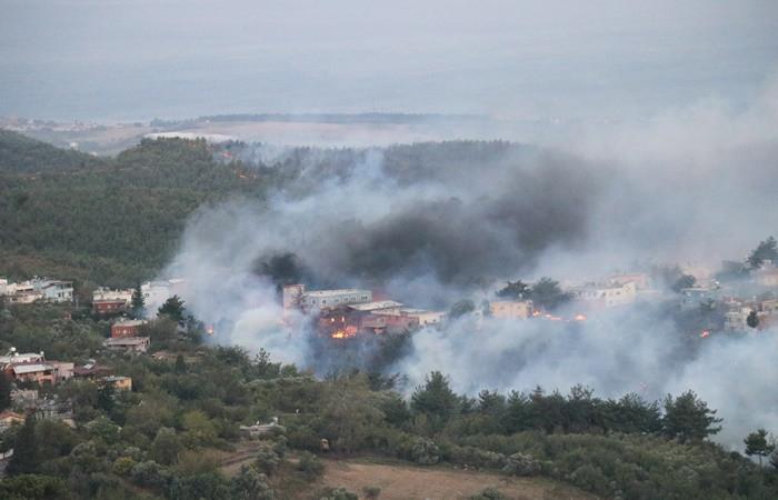 Hatay'da yangın felaketi