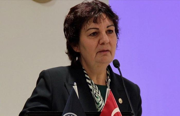 CHP'li Karabıyık: İstanbul Sözleşmesi'nden geri adım atılması düşünülemez