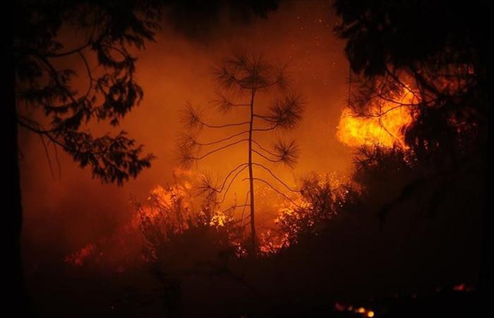 Oregon'daki yangınlarda 5 kasaba tahrip oldu