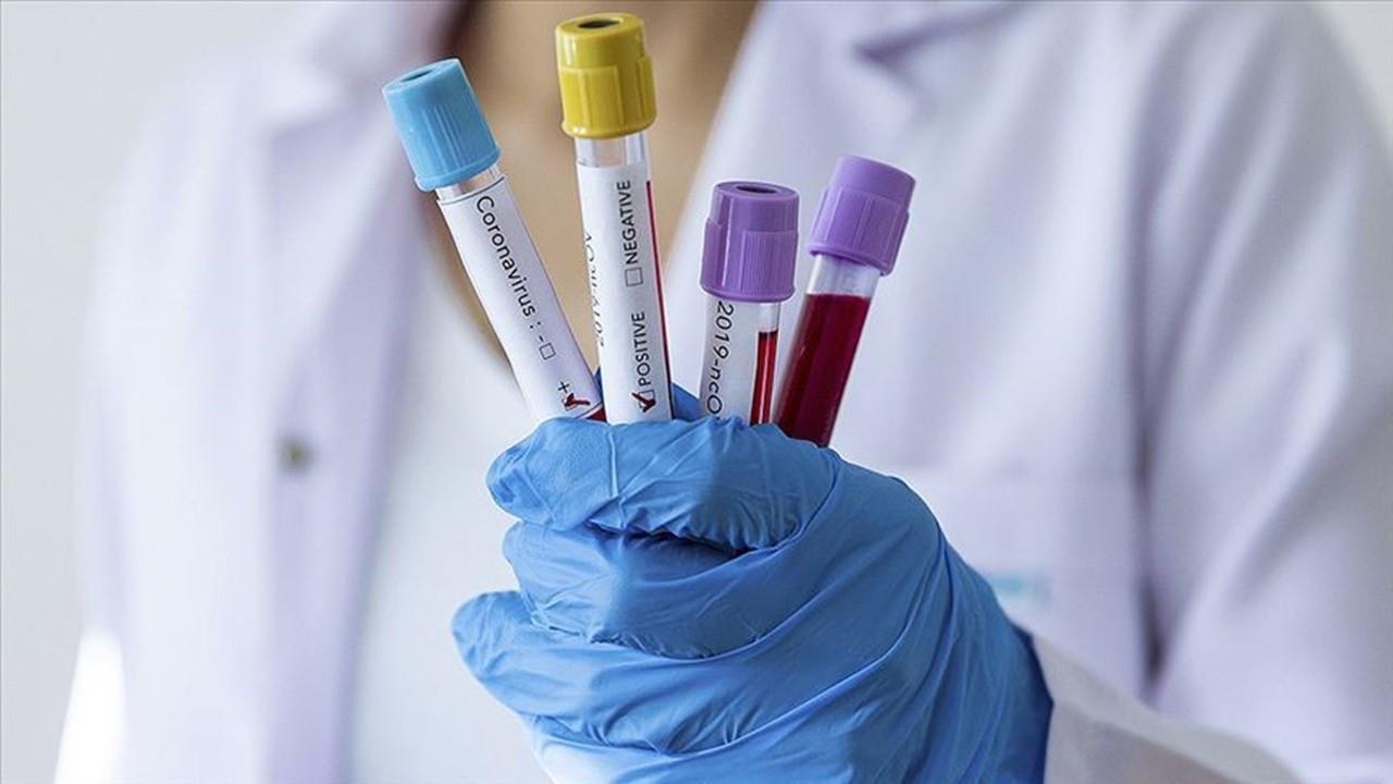 Dünya Veteriner Hekimler Günü'nde pandemi vurgusu