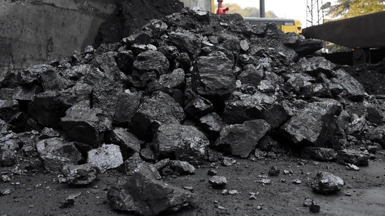 TTK, şubatta taş kömürü satışından 25,5 milyon lira gelir sağladı