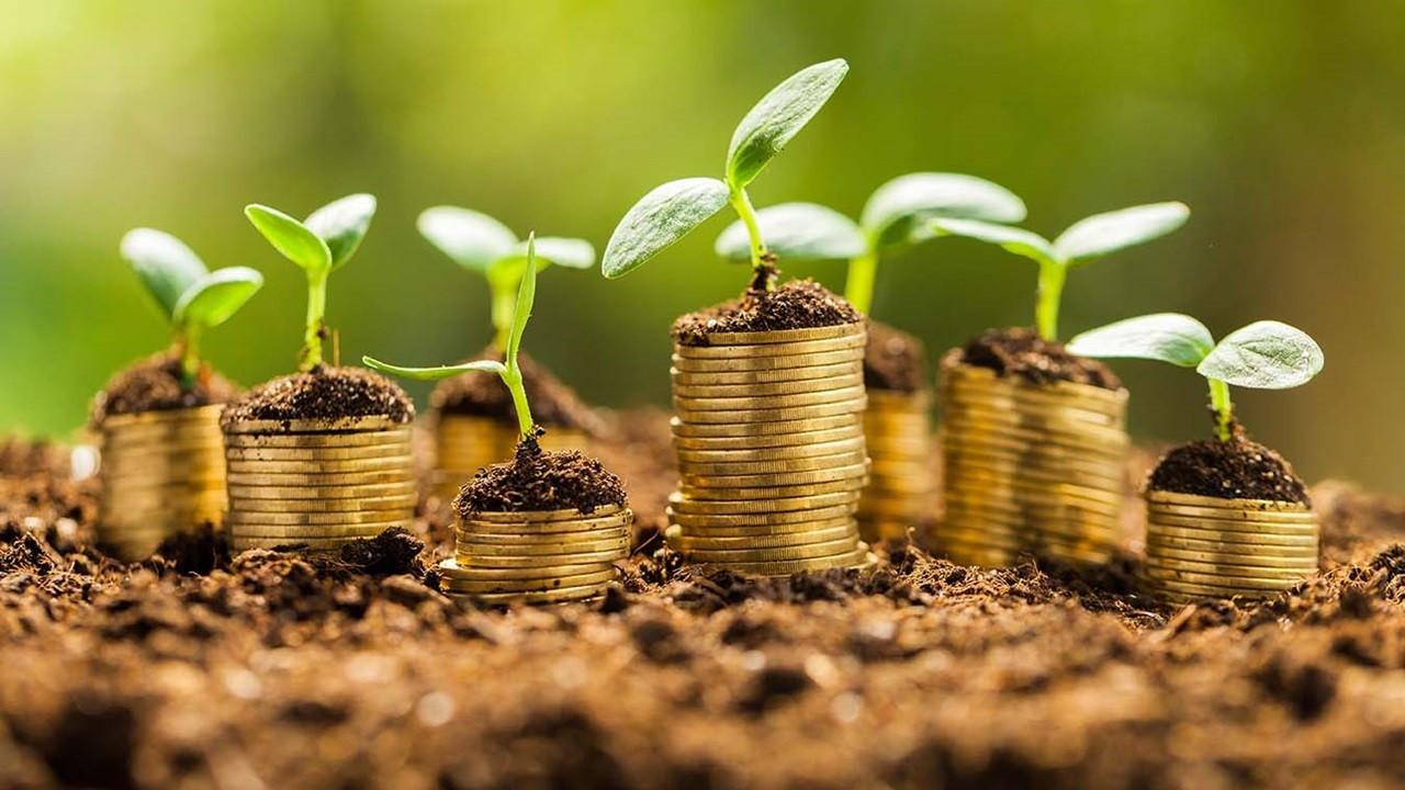 Ulusal varlık fonları ne kadar sürdürülebilir?
