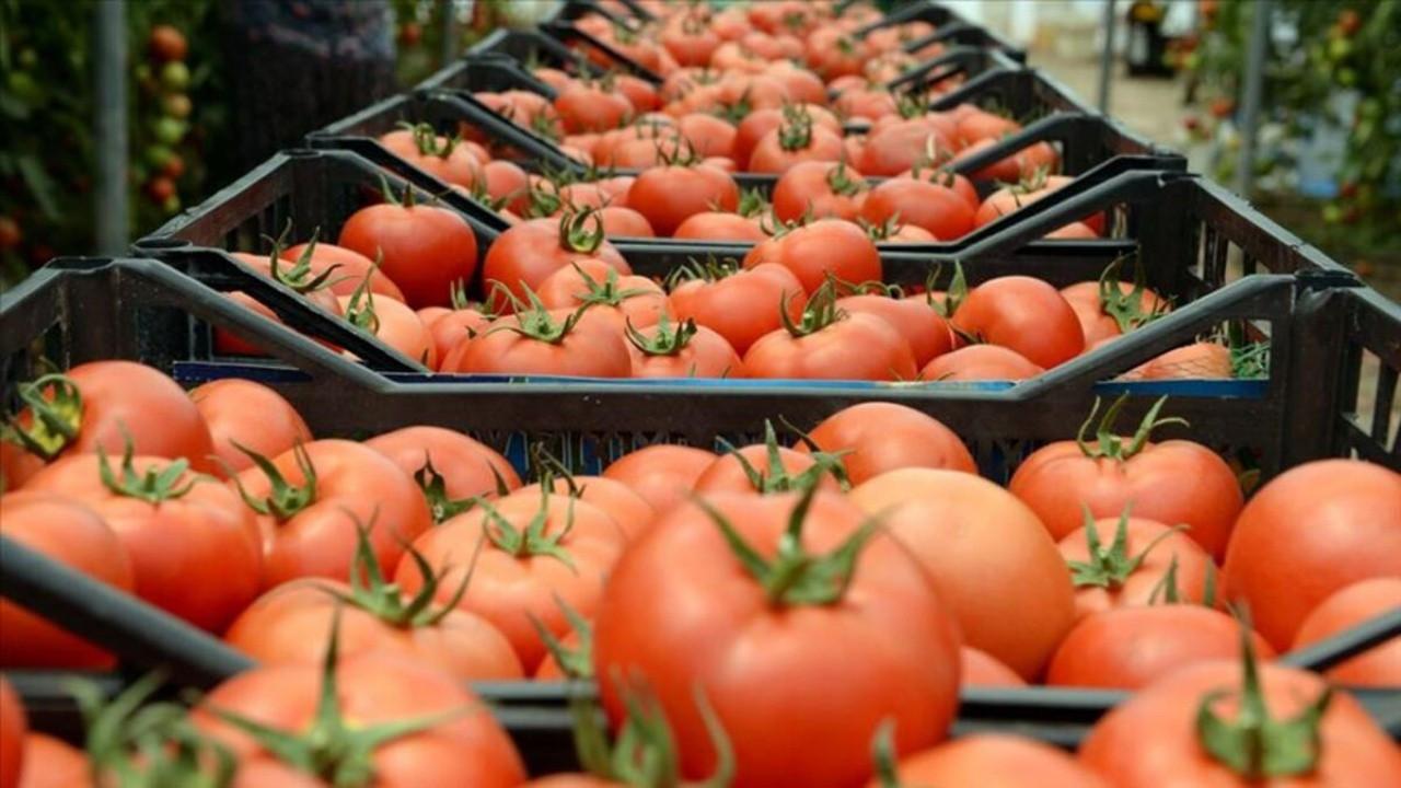 Nisan ayının zam şampiyonu domates oldu