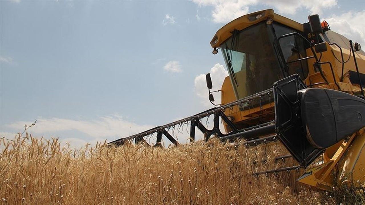 TMO'dan buğday ithalatı açıklaması: Yüksek fiyat tekliflerini kabul etmedik