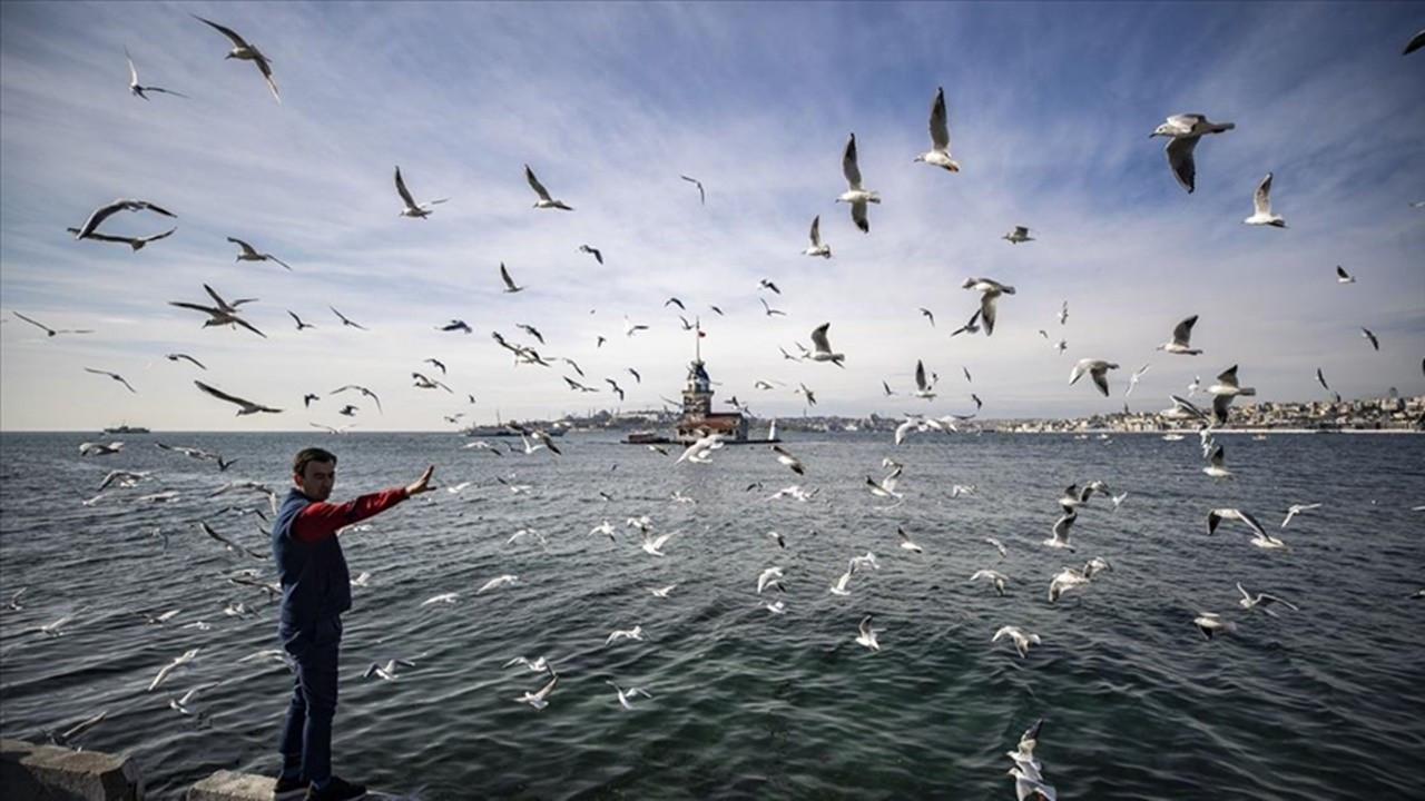 Türkiye'de ocak ayında 72 merkezde sıcaklık rekoru kırıldı