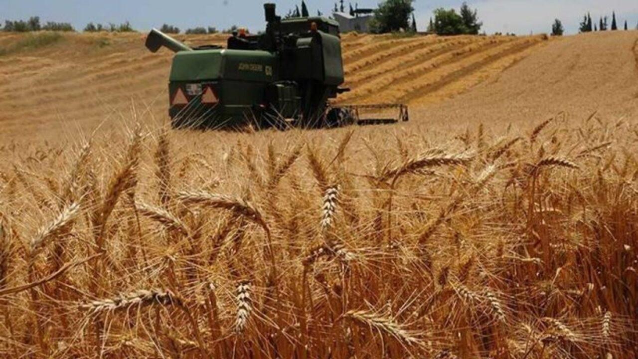 Tarımda yüzde 4.8 büyüme çiftçiye ne kadar yansıdı?