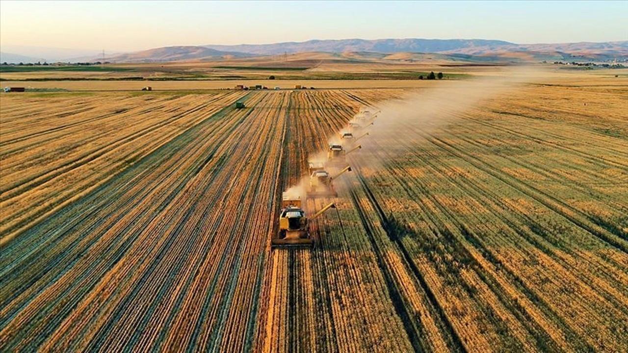Tarım Kredi borçları yapılandırılacak