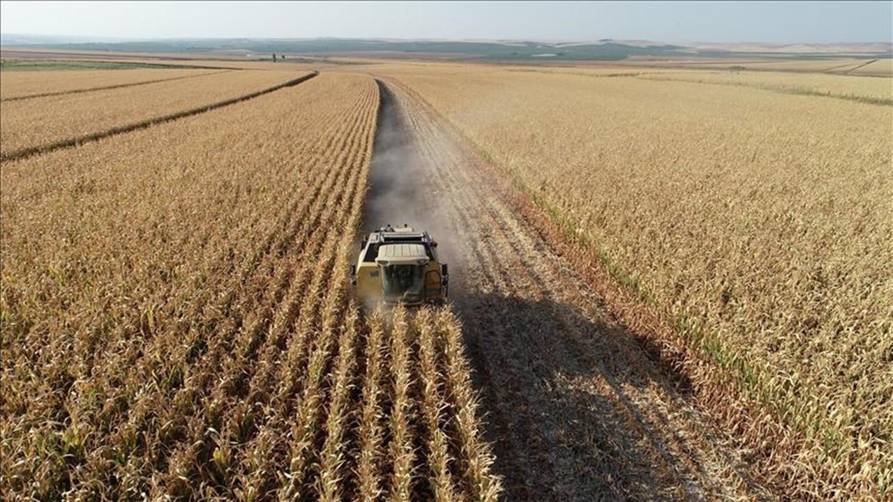 Mutlak tarım arazisi nedir?