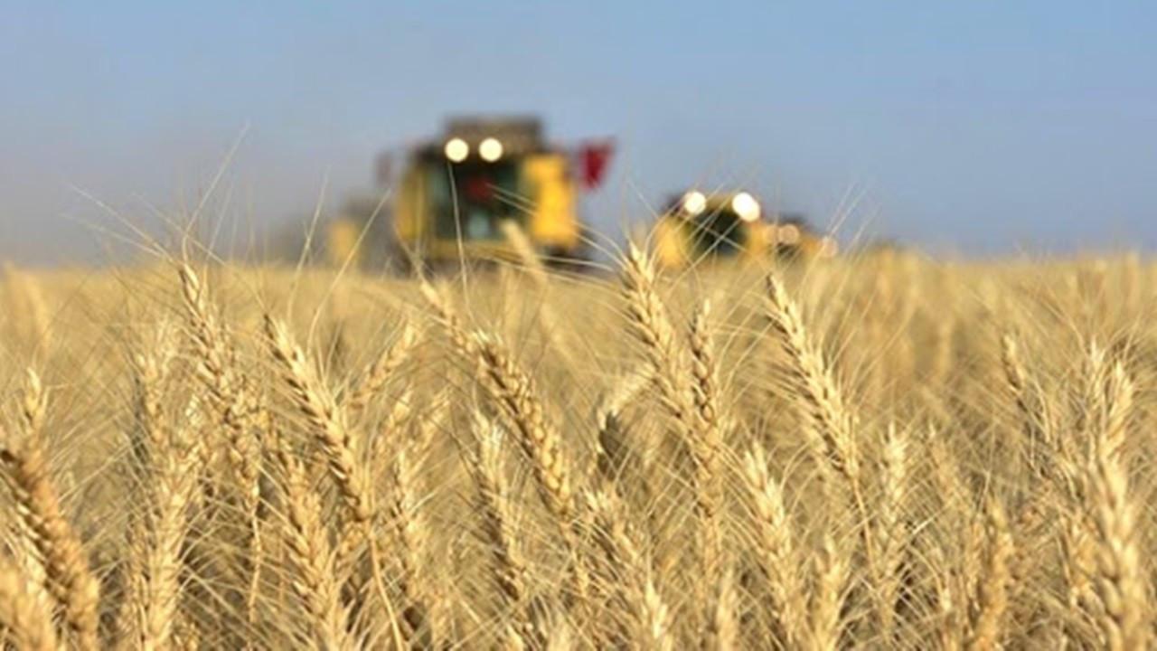 Tarımda girdi fiyatları yıllık yüzde 19,60, aylık yüzde 1,40 arttı