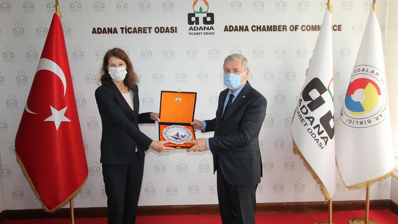 Adana'dan Hollanda'ya topraksız sera OSB'ye yatırım çağrısı