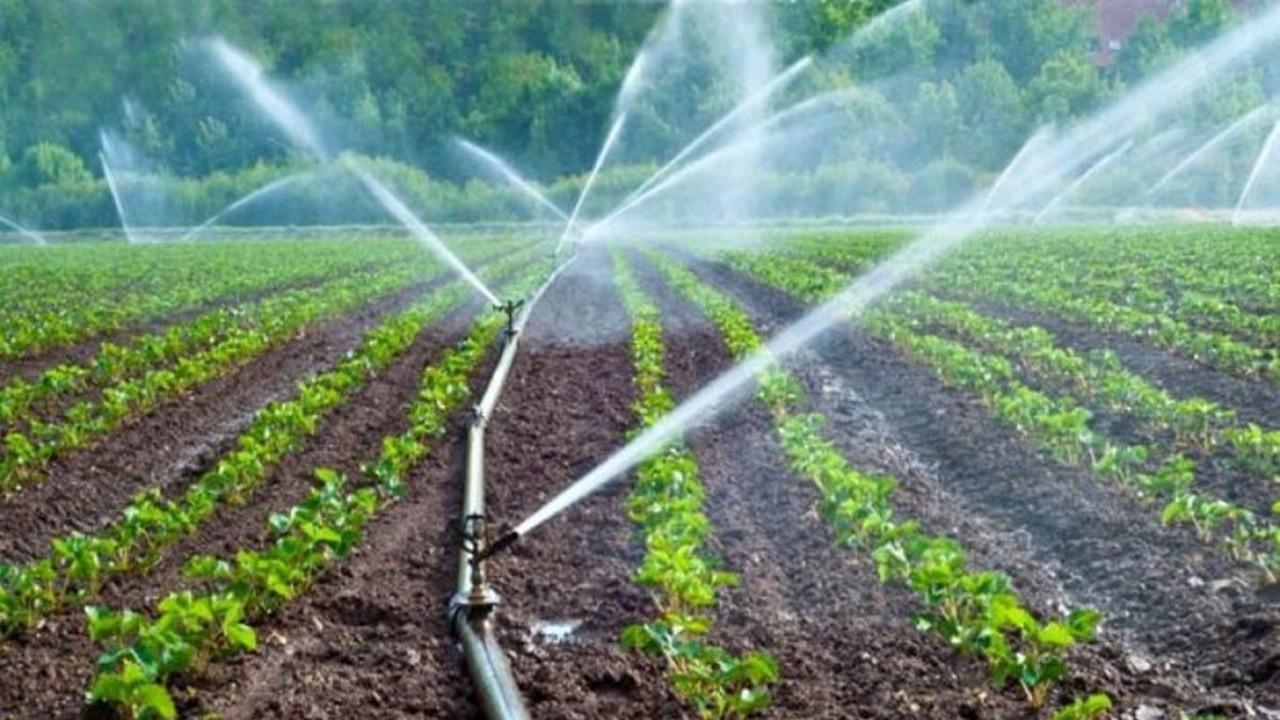 Tarım ve Orman Bakanlığı 100 bin TL hibe desteğini kimler alabiliyor?