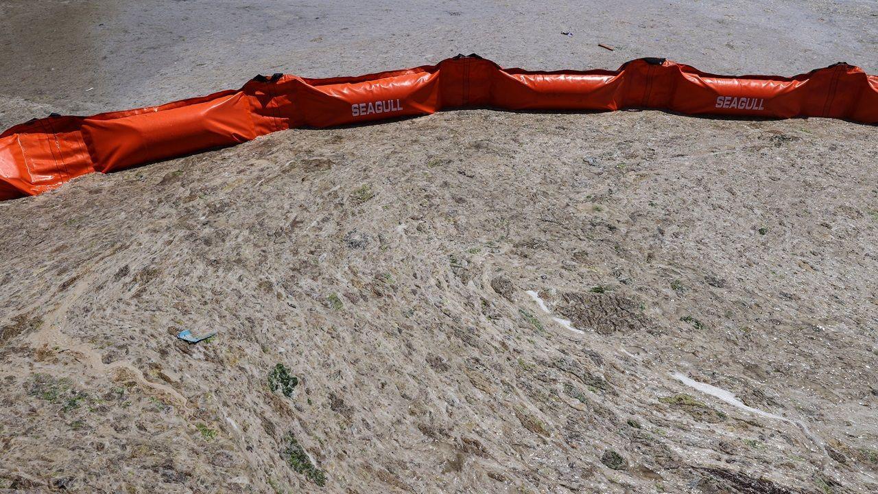 Se iniciaron los trabajos de limpieza de la saliva marina - Página 4