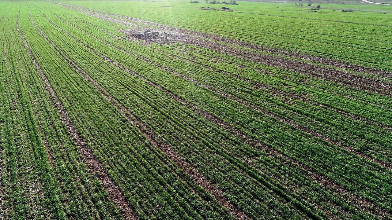 Tarım sezonunda yağışlar yüzde 27 azaldı