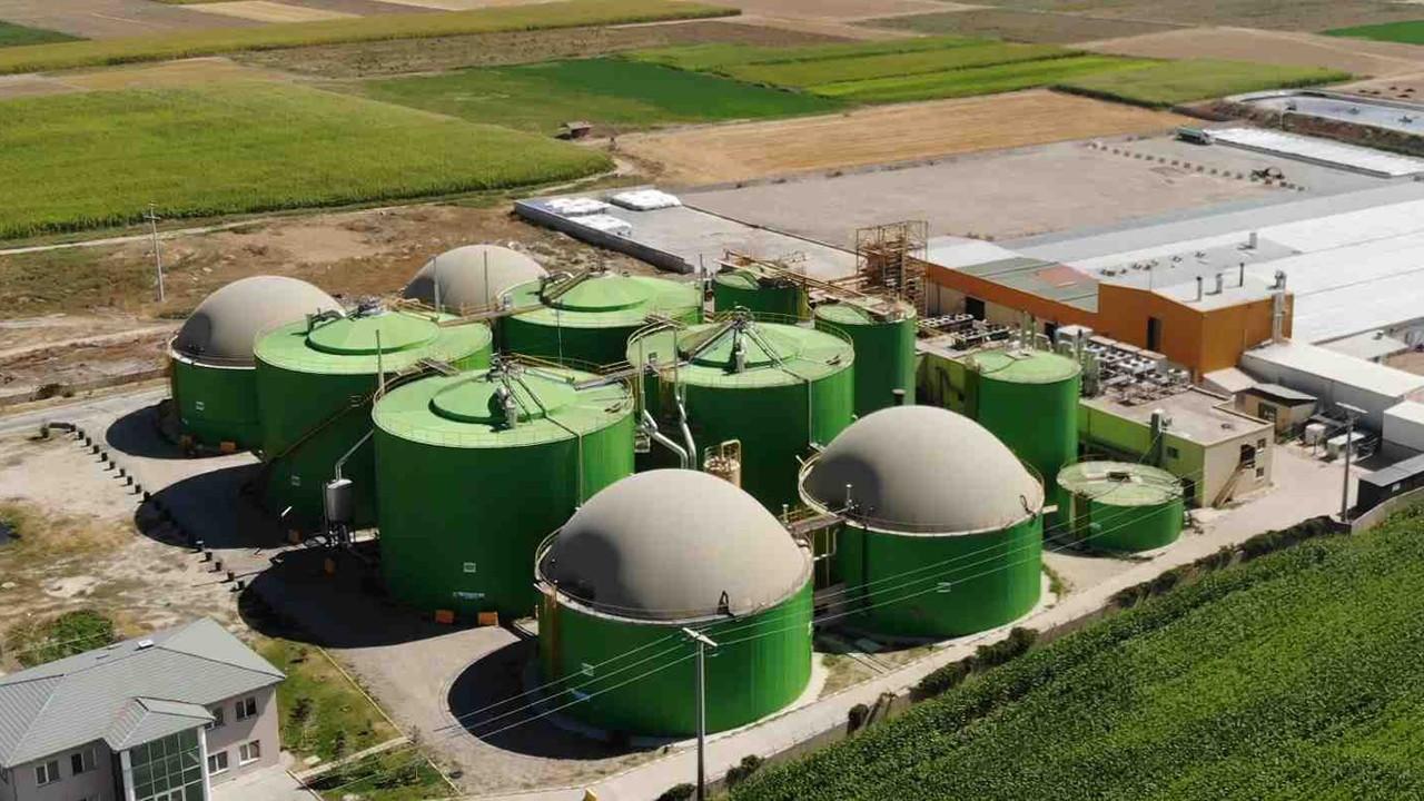 Afyon Enerji ve Gübre'den çaya organik gübre