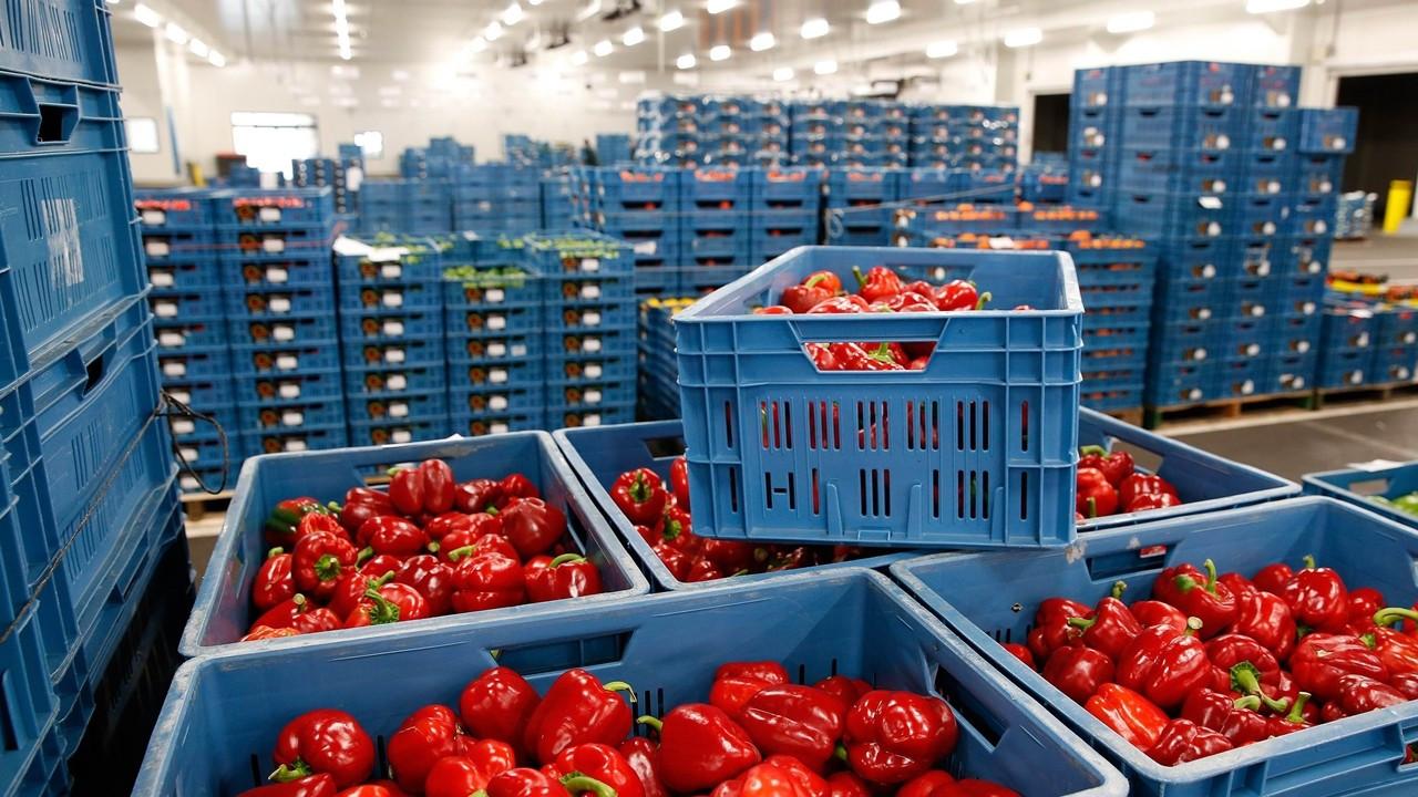 Gıda ithalat maliyetinin rekor seviyeye çıkması bekleniyor