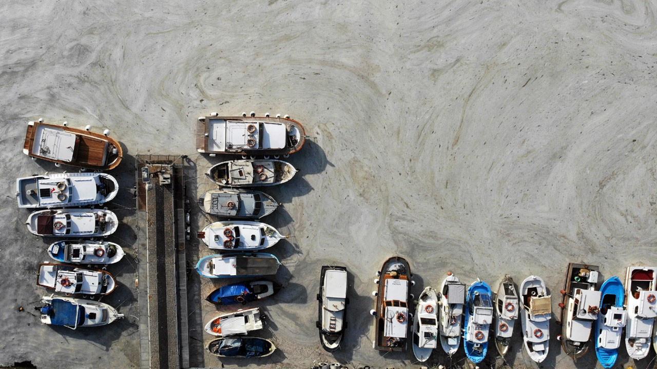 Müsilaj Çanakkale kıyılarını sardı
