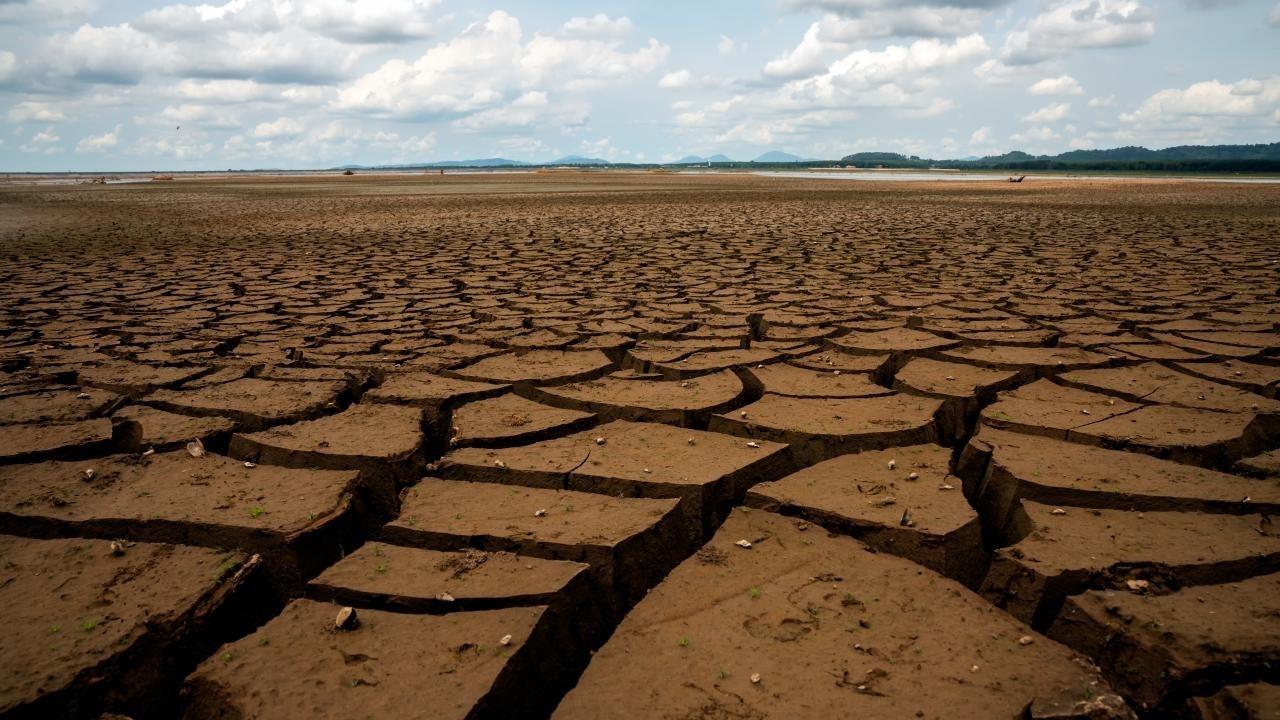 Sigortasız çiftçiye 'kuraklık desteği' Afet Fonu'ndan yapılacak