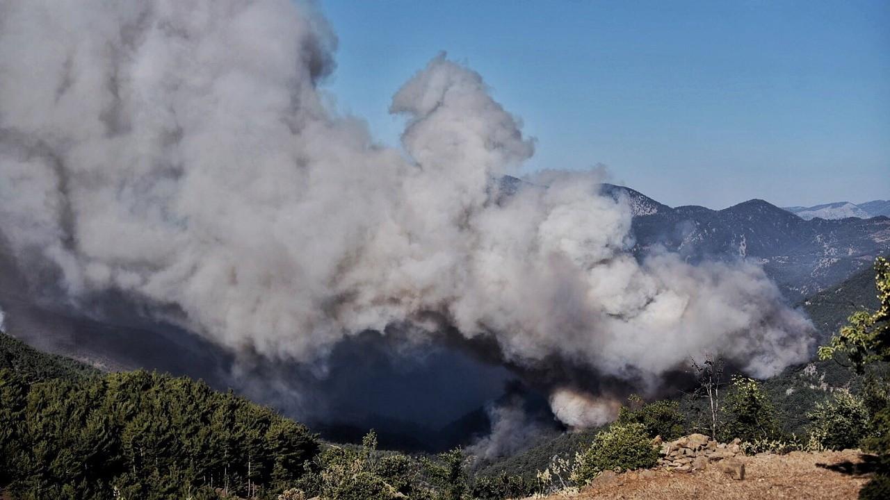 Ünlü isimlerden orman yangınlarına karşı farkındalık çağrısı