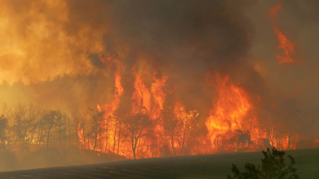 Manavgat'taki büyük yangından kareler