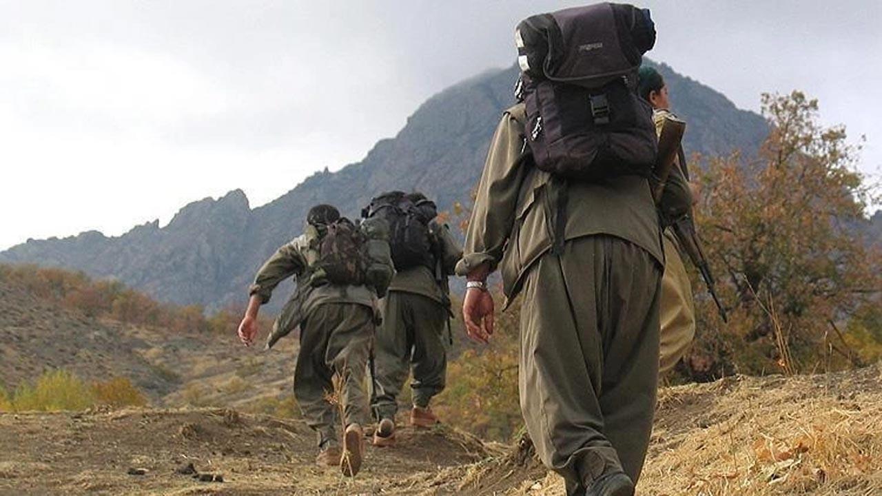 İkna edilen PKK'lı 5 terörist teslim oldu
