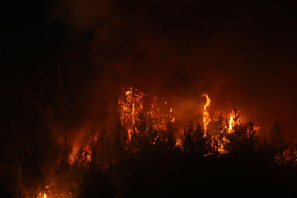 Yangın sürüyor: Adana ve Manavgat'tan yürek burkan fotoğraflar - Sayfa 2