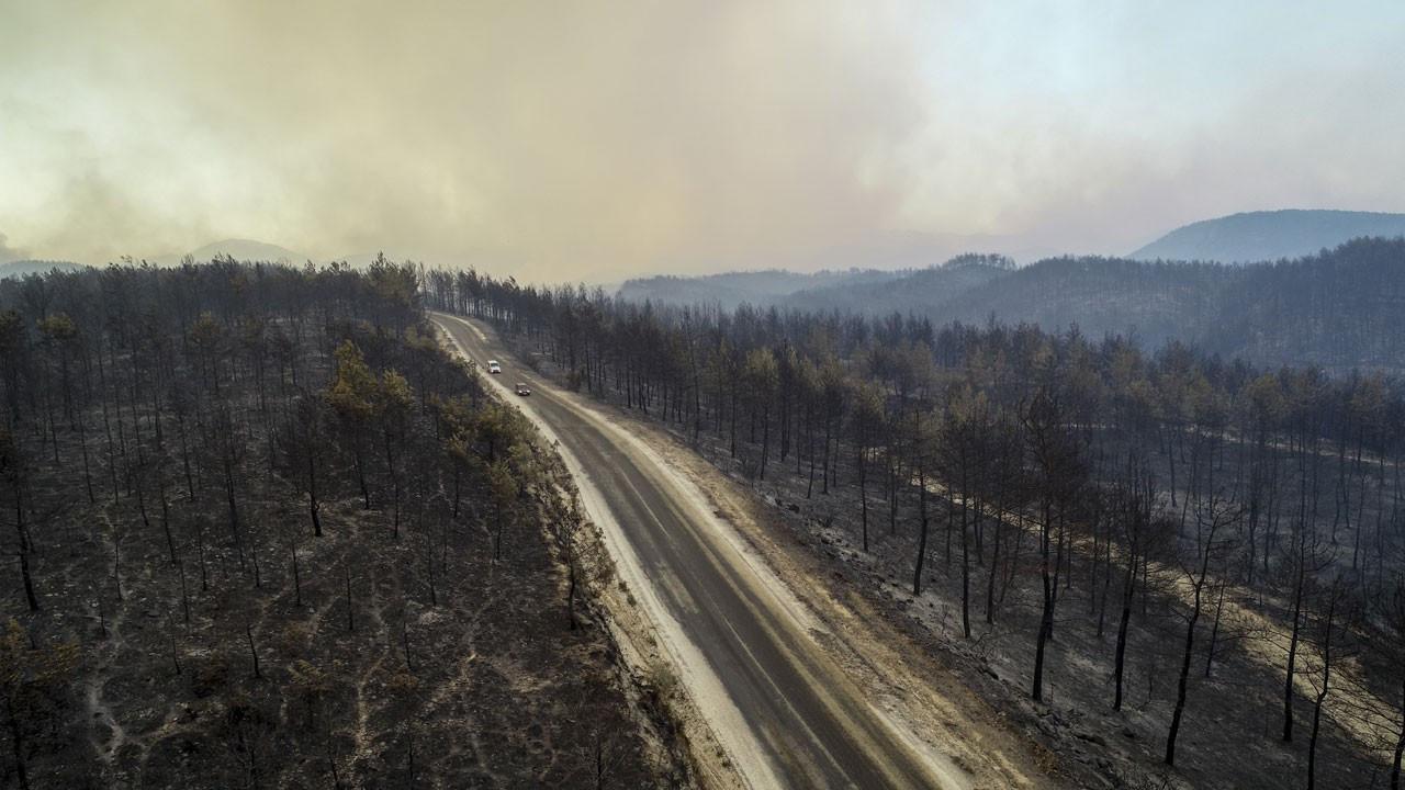 AFAD: Manavgat yangınında 3 kişi öldü, 58 kişinin tedavisi sürüyor