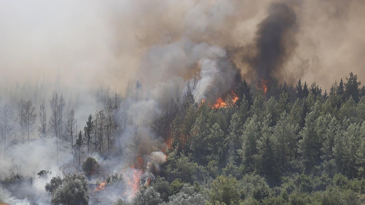 CHP'den orman yangınlarını araştırma önergesi: Seyirci kalmak en büyük ihanettir