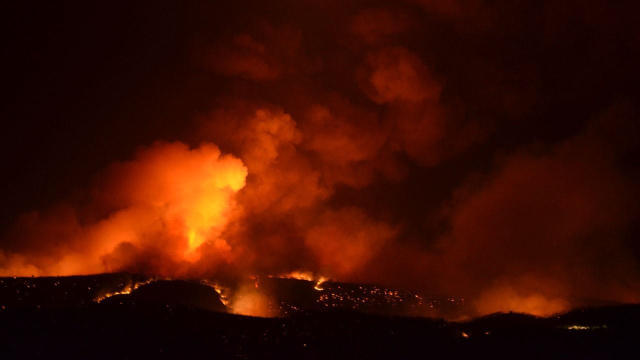 Aydın Bozdoğan'da orman yangını