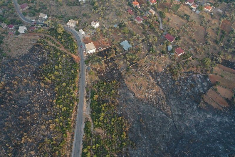 Müdahale devam ediyor: Orman yangınlarında son durum - Sayfa 1