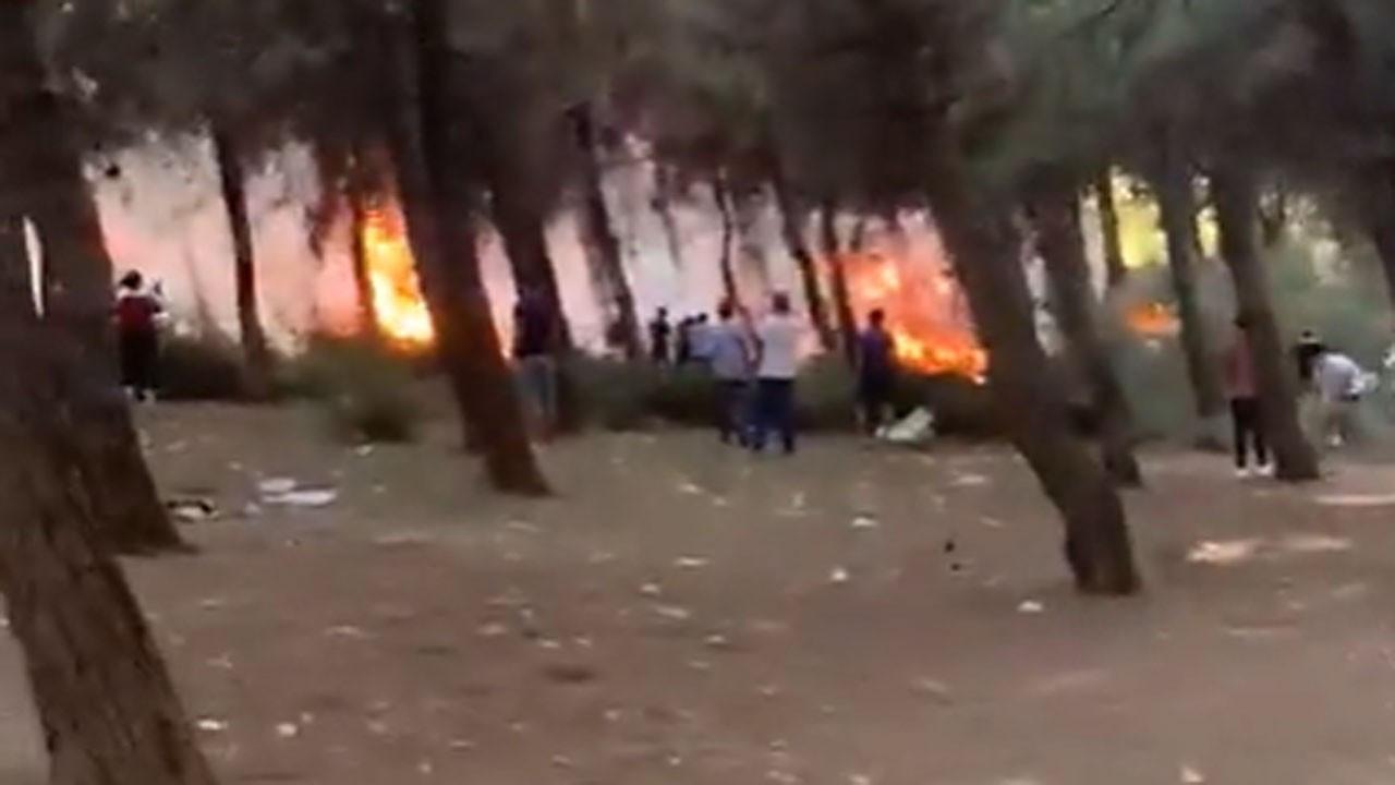 İzmir'de çıkan orman yangını korkuttu