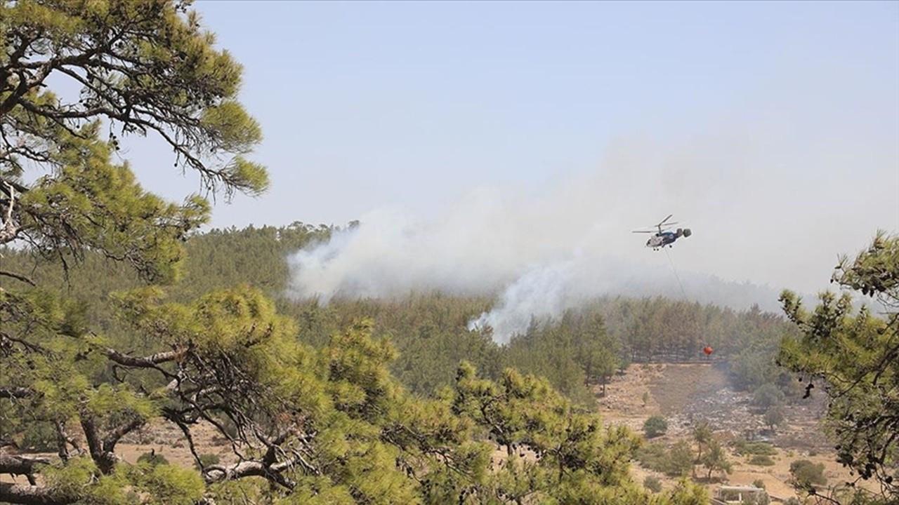 Girgin: Yangın termik santralin 200 metre yakınında