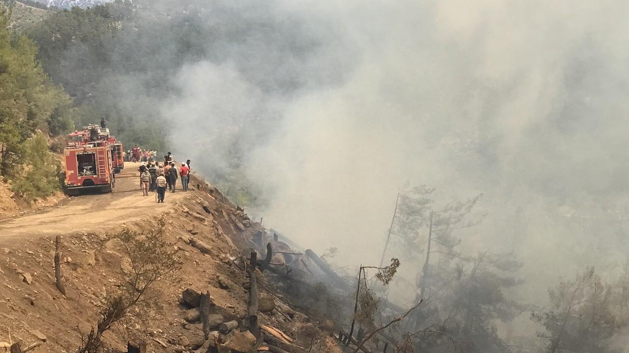 Pakdemirli: 33 ilde 167 yangın kontrol altına alındı