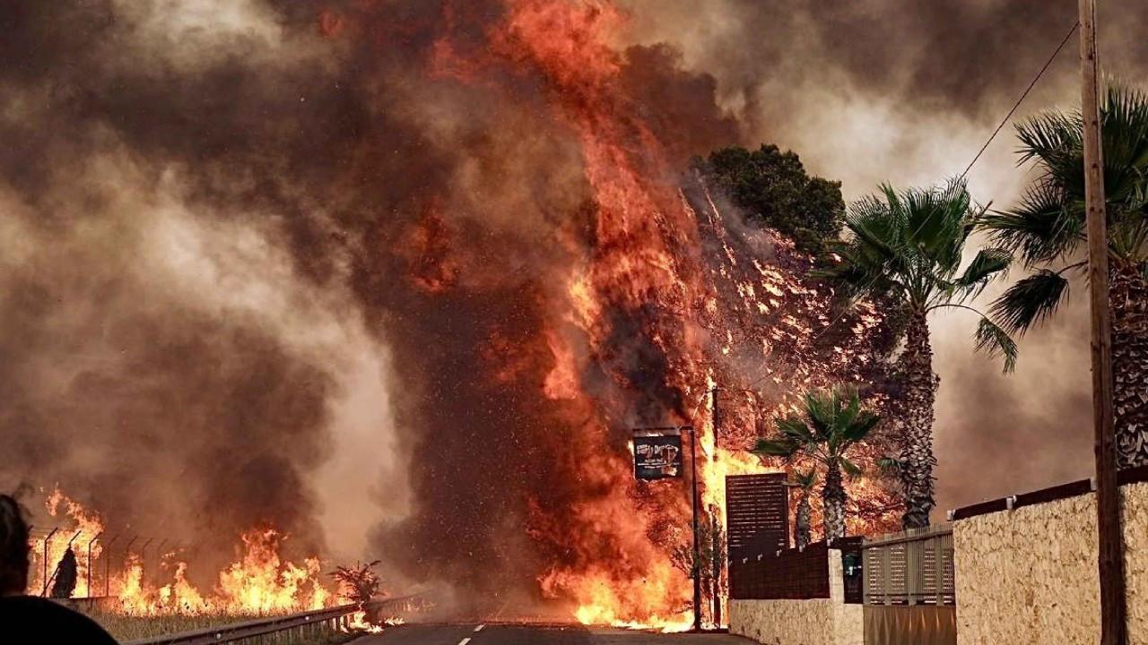 Atina'da orman yangınları