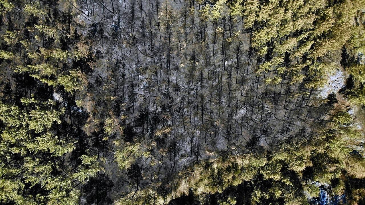 TZOB, yangından zarar gören çiftçiler için yardım kampanyası başlattı