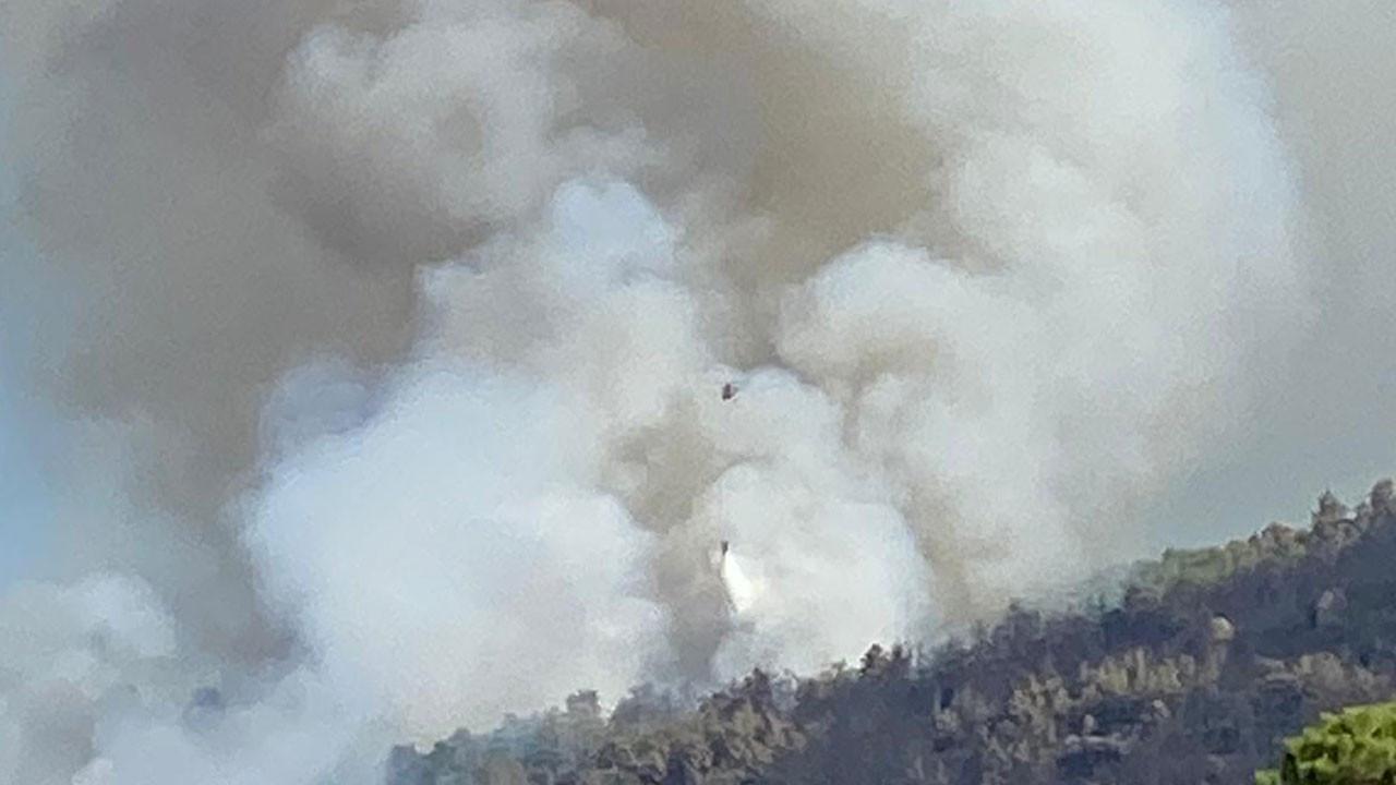 Çine'de ormanlık bölgede yeniden yangın çıktı