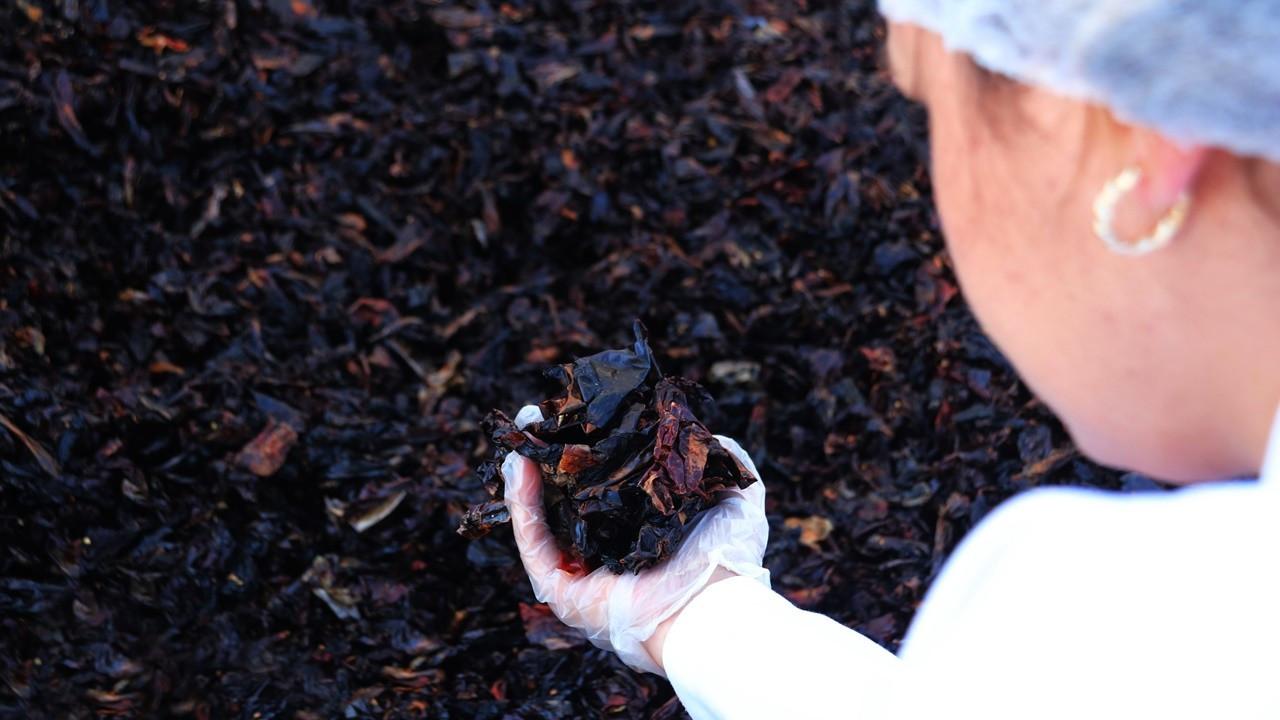 Urfa İsotu, 'Taste Of Urfa' markasıyla Avrupa'ya açılıyor