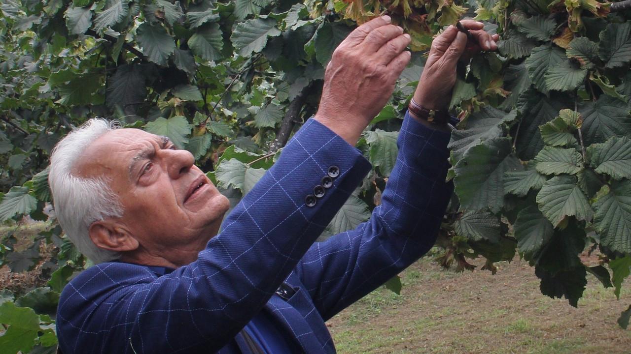 Türkiye'de fındık ihracatçısıydı, Hollanda'da ithalatçı oldu