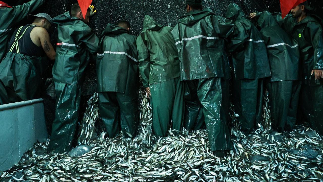 İstanbul'da balıkçılar ilk ağlarını çekti