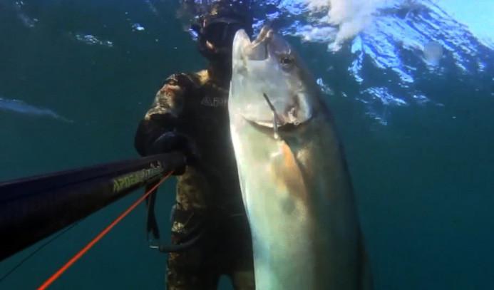 Tüpsüz dalışla 47 kiloluk balık avladı