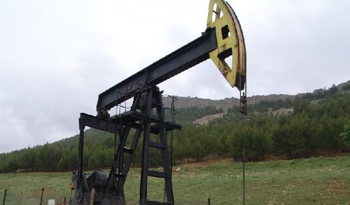 Petrol ithalatı aylık arttı, yıllık azaldı