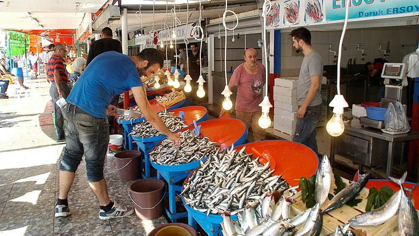 Balıkçılar 'vira bismillah' dedi tezgahlar şenlendi