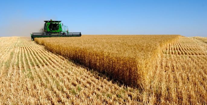 Tarımsal desteklemede 'havza' modeli